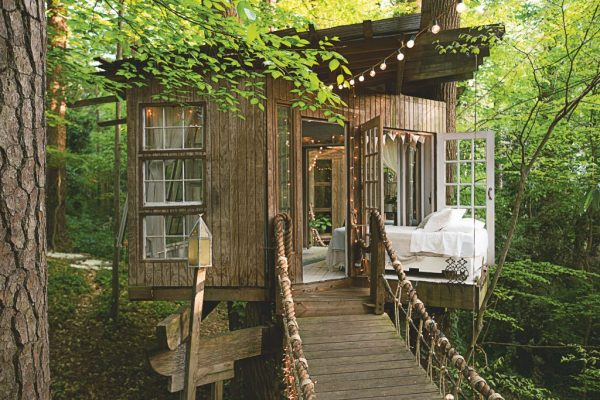 Шикарный домик на дереве с мостом