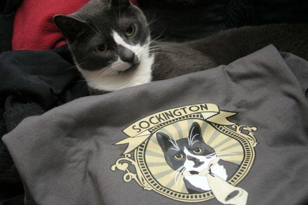 Кот Сокингтон и футболка с его изображением