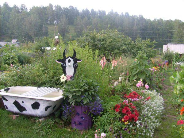 Корова из ванны