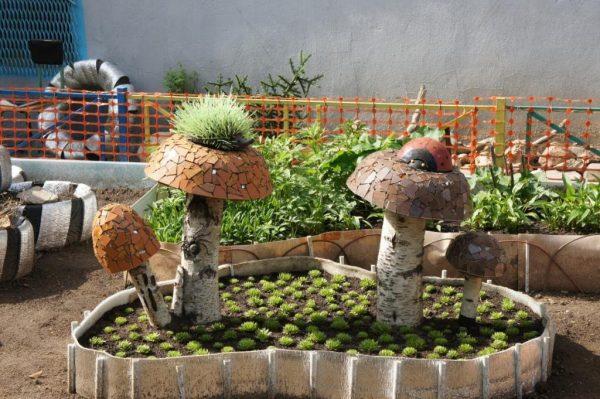 Полянка грибов