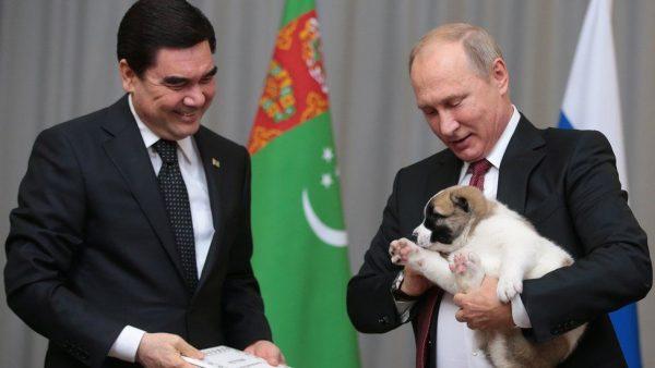 Путин и алабай