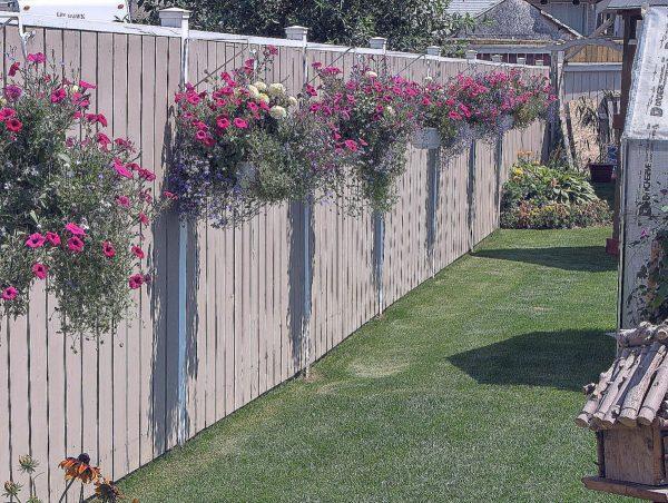 Забор в цветах