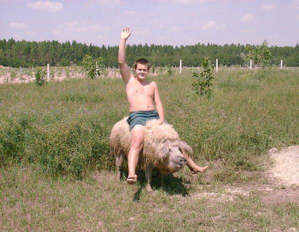 Парень со свиньёй