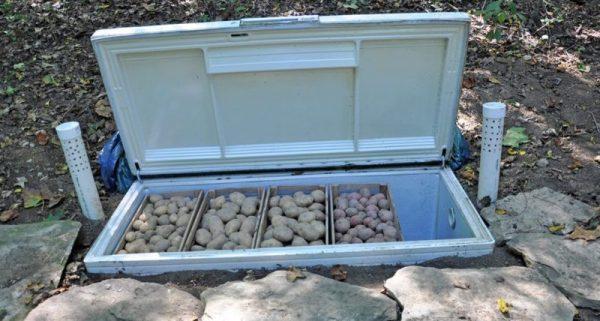 Холодильник в качестве погреба