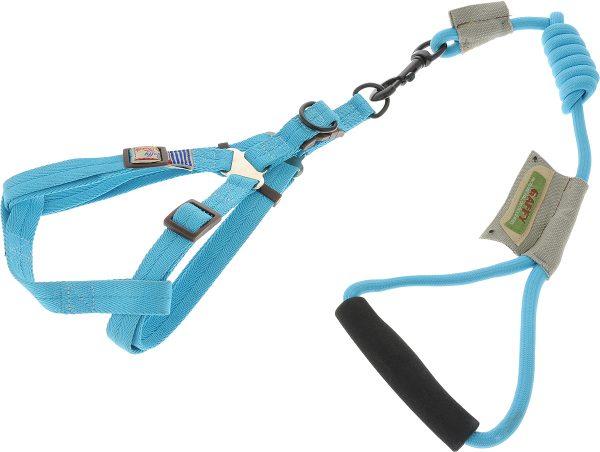 Голубая шлейка для собаки