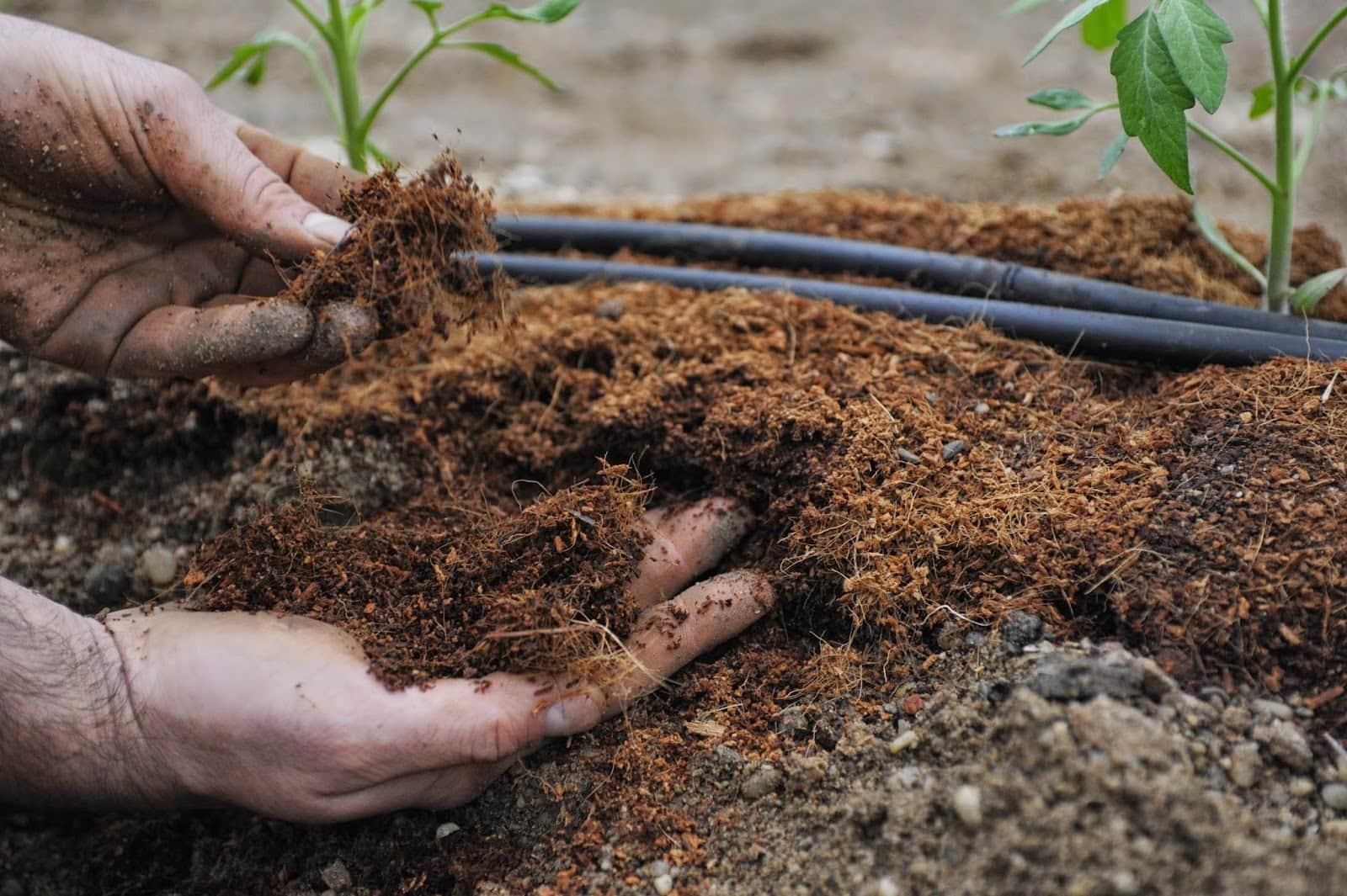 удобрение своими руками для сада
