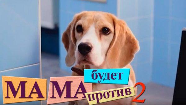 Бигль Хэппи на заставке сериала «Мама будет против 2»