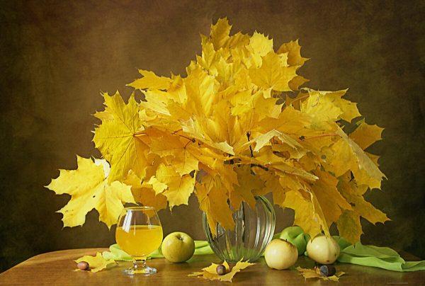 Жёлтые листья клёна