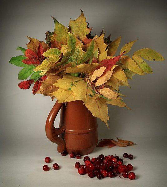 Листья в кувшине
